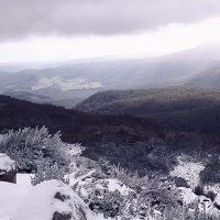Jansz Tasmania - Methode Tasmanoise